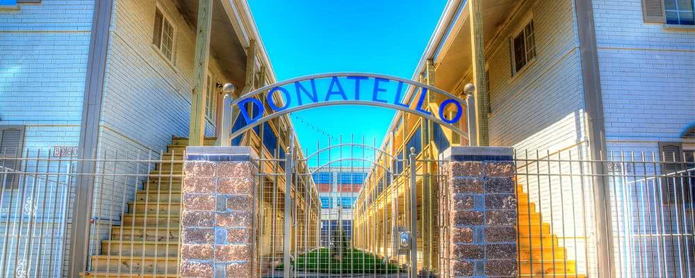 donatello-ft